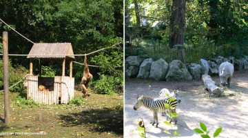 zoo-citadelle-Vauban-lille-nord-decouverte