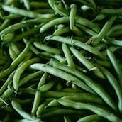 haricots-verts-marche-saison-nord-decouverte