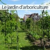ardin-arboriculture-citadelle-vauban-lille
