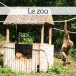 zoo-lille-citadelle-nord-decouverte