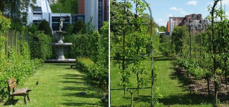 Le jardin d 39 arboriculture de lille for Le jardin d alix lille