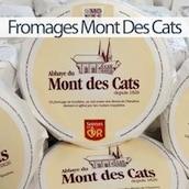 fromages-mont-des-cats-nord-decouverte