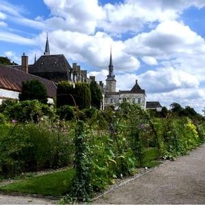 jardins-la-chartreuse-de--neuville-sous-montreuil-nord-decouvert