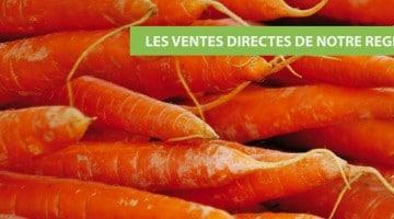 carotte-vente-directe-nord-pas-de-calais-decouverte