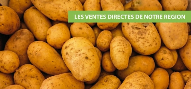 pommes-de-terre-vente-directe-nord-pas-de-calais-decouverte.