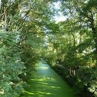 promenade-canal-seclin-parc-deule-nord-decouverte