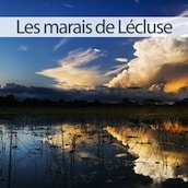 marais-lecluse-nord-decouverte