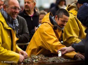 Certains jours, après la pêche, on peut déguster les crevettes fraîches cuites sur le front de mer de la plage d'oostduinkerke à coxyde, reportage Nord Découverte