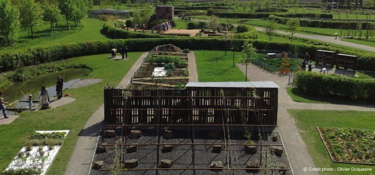 vue-panoramique-mosai
