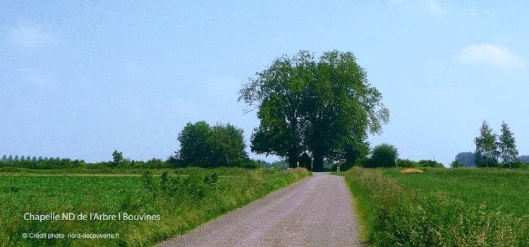 chapelle-notre-dame-de-larbre-bouvines-nord-decouverte