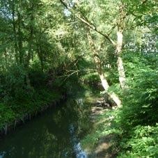 riviere-la-marque-nord-decouverte