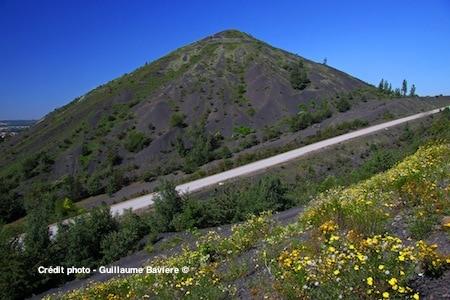 un sentier bien amnéagé permet de faire la montée d'un des deux terrils jumeaux de Loos-en-Gohelle reportage Nord Découverte