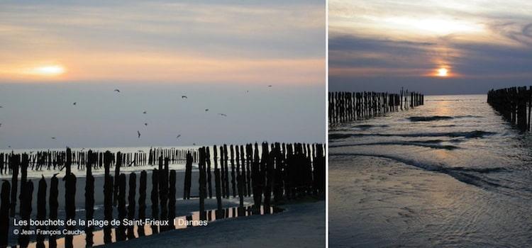 A marrée basse les pieux des bouchots emergent de l'estran de la plage Saint-Frieux