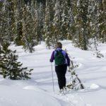 balade de ski de fond sur les pistes de Chimay dans le Hainaut en Belgique, article mis en ligne par Nord Découverte