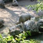 zoo-Citadelle-lille-nord-decouverte