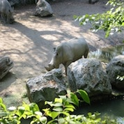 zoo-Citadelle-lille-nord-decouverte