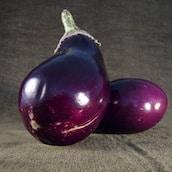 aubergine-marche-saison-nord-decouverte