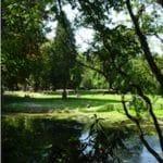 vue des miroirs d'eau du jardin Vauban à Lille
