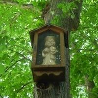 chapelle-arbre-saint-matthieu-musee-Godewaersvelde-nord-decouverte
