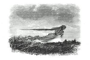 La Dame des Clair survole les marais de Palluel