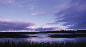 vue de nuit des marais de Palluel reportage Nord Découverte