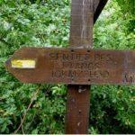 sentier-des-etangs-oisy-le-verger-megalithe-nord-decouverte