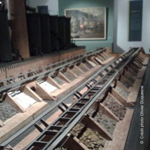 vue-musee-histoire-naturelle-lille-nord-decouverte