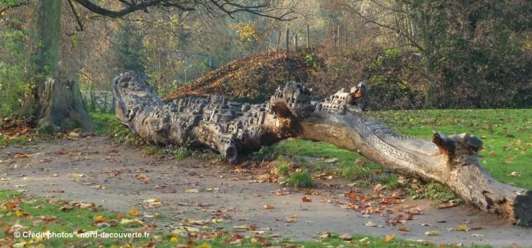 arbre-sculpte3-citadelle-lille-nord-decouverte