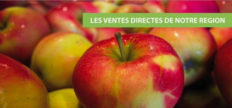 pommes-vente-directe-nord-pas-de-calais-decouverte