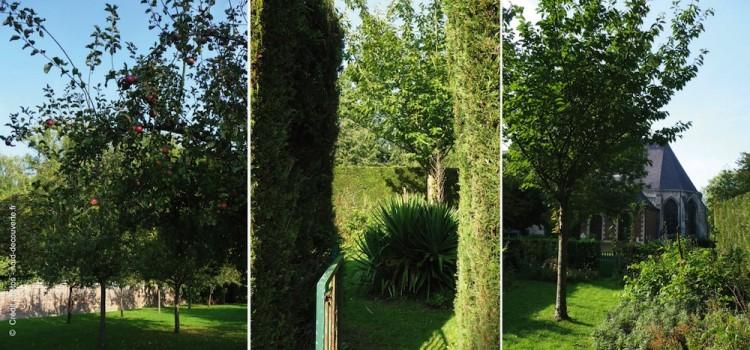 seclin-petit-jardin-hopital-marguerite-de-flandres-jardin-nord-decouverte
