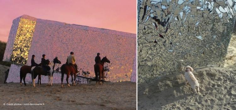 reflet-chevaux-blochaus-miroir-Leffrinckoucke-soir-nord-decouverte