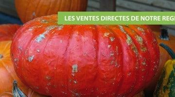 image-citrouille-potiron-vente-directe-nord-pas-de-calais-nord-decouverte