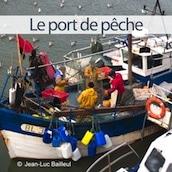 mini-port-de-peche-boulogne-sur-mer-nord-decouverte