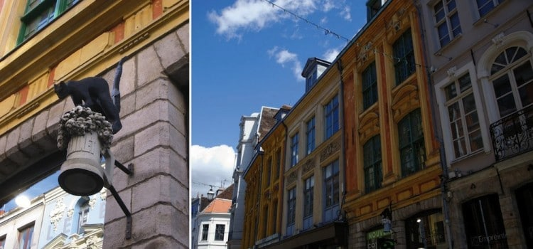 facades-chats-bossus-lille-nord-decouverte