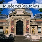 musee-beaux-arts-valenciennes-nord-decouverte