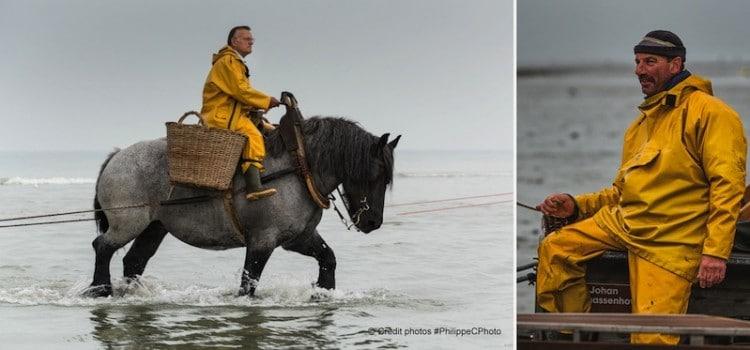 vue de pêcheurs de crevettes à cheval à coxyde oostduinkerke reportage Nord Découverte