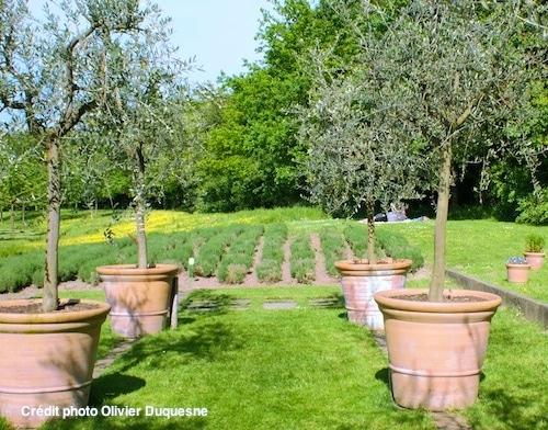 jardin nord cheap m sur terrain mproche baie with jardin nord affordable design maison jardin. Black Bedroom Furniture Sets. Home Design Ideas