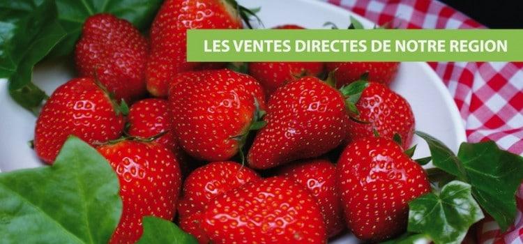 fraise-vente-directe-nord-pas-de-calais-nord-de-decouverte