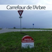 mini-carrefour-arbre-bouvines-nord-decouverte