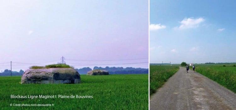 plaine-bouvines-nord-decouverte