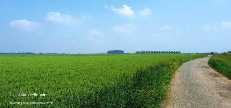 plaine-lieu-de-bataille-bouvines-nord-decouverte