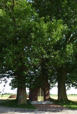 chapelle-aux-arbres-cysoing-bouvines-nord-decouverte