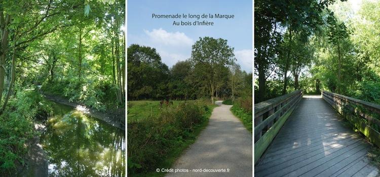 promenade-la-Marque-Bois-infieres-nord-decouverte