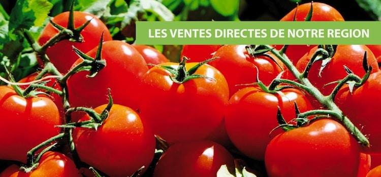 tomates-en-direct-producteur-nord-decouverte