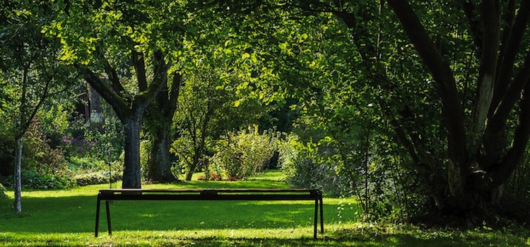 banc-jardins-abbaye-de-vaucelles-nord-decouverte