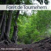 foret-tournehem-nord-decouverte