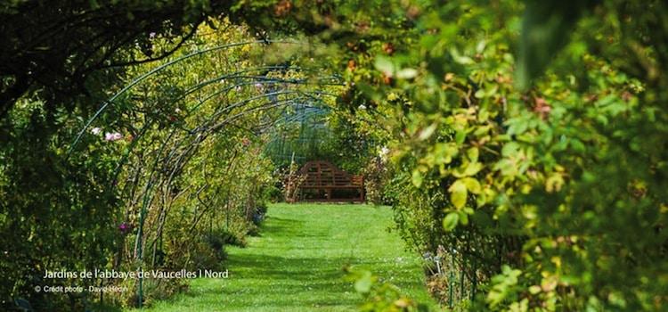 les tonnelles du jardin de l'abbaye de Vaucelles