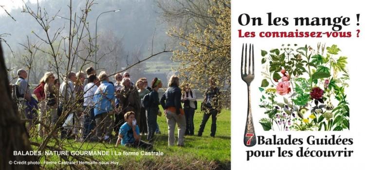 balades-gourmandes-ferme-castrale-Hermalle-sous-Huy-nord-decouverte