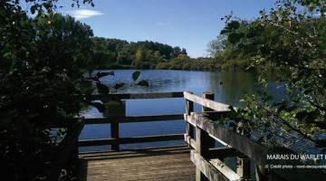 ponton d'observation des marais de Fretin