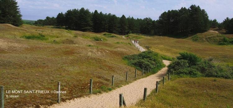 Plusieurs sentiers permettent l'ascension du Mont Saint-Frieux